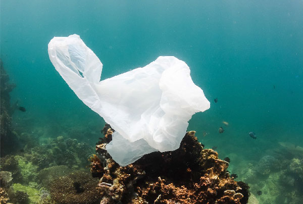 Plastique à usage unique